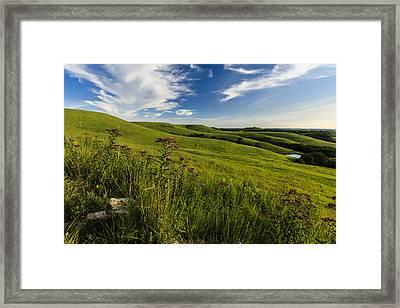 Hillside Seat Framed Print