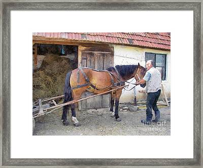 Hitched The Horses Framed Print