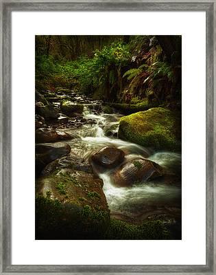 Hoh Stream Framed Print