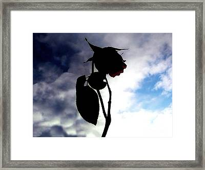 Holding Out Hope Framed Print by Scott Allison