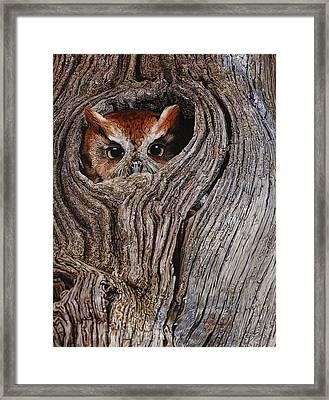 Hollowed Home Framed Print