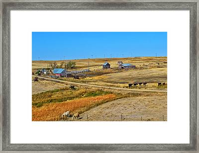 Home On The Range Framed Print by Kelly Reber
