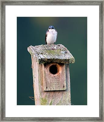 Home Sweet Home Framed Print by Bill Wakeley