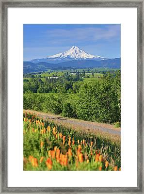 Hood River, Oregon Framed Print