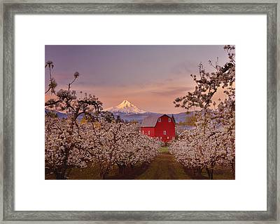 Hood River Sunrise Framed Print