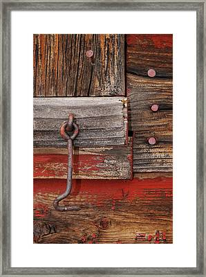 Hooked Framed Print by Larysa  Luciw