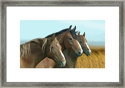 Hope Of The Mustangs Framed Print by Kate Black
