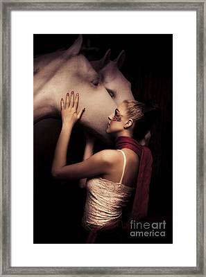 Horse Framed Print by Jorgo Photography - Wall Art Gallery