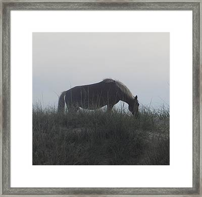 Horses Of Corolla 5 Framed Print by Cathy Lindsey