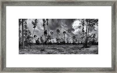 Houston Memorial Park Drought Framed Print by Joshua House
