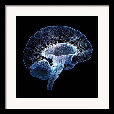 Human Mind Framed Prints