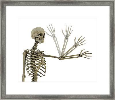 Human Elbow Joint Framed Print by Mikkel Juul Jensen