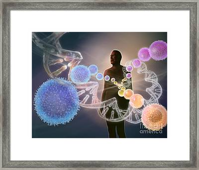 Human Stem Cells Framed Print
