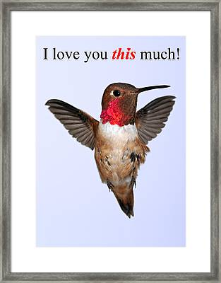 I Love You This Much Framed Print