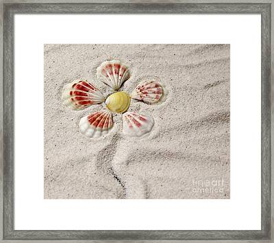 I See Yellow Framed Print