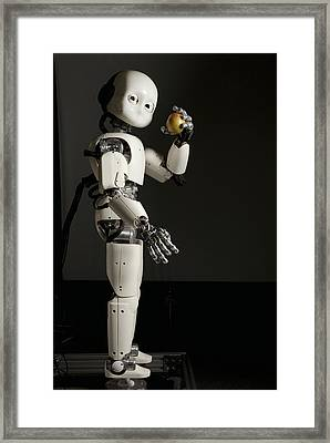iCub robot Framed Print by Science Photo Library