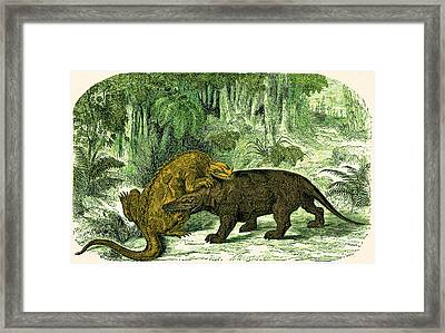 Iguanodon Biting Megalosaurus Framed Print by Wellcome Images