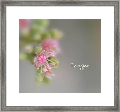 Imagine Now Framed Print