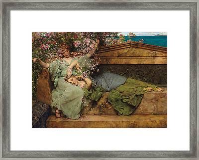 In A Rose Garden Framed Print