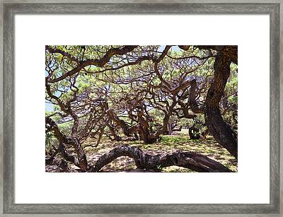 In The Depth Of Enchanting Forest Framed Print by Jenny Rainbow