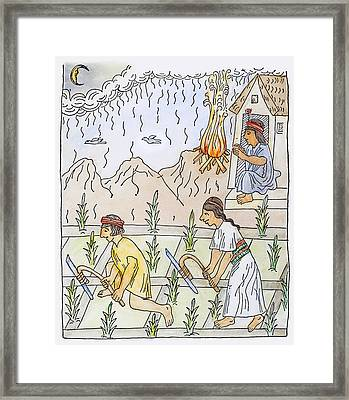 Incan Cultivation Framed Print by Granger
