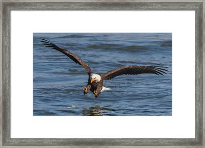 Incoming  Framed Print by Glenn Lawrence