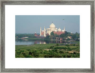 India, Agra View Of The Taj Mahal Framed Print