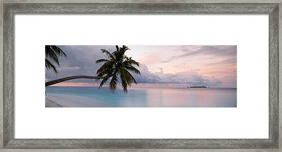 Indian Ocean Maldives Framed Print by Panoramic Images