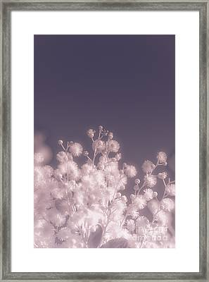 Infrared Nature Bloom Framed Print by Jorgo Photography - Wall Art Gallery