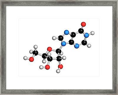 Inosine Nucleoside Molecule Framed Print