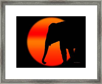 Into The Night Framed Print by Robert Orinski