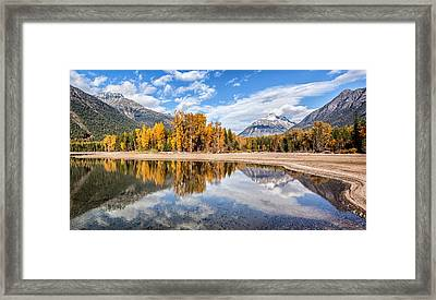 Into The Wild Framed Print by Aaron Aldrich