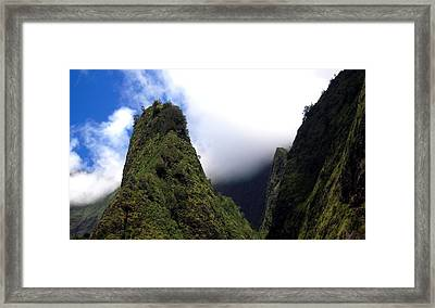 Ioa Needle Framed Print