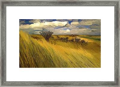 Iowa Prairie Grasses  Framed Print by Randy Sprout