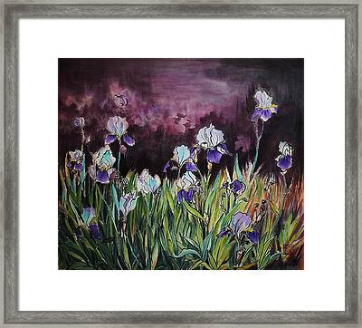 Iris In My Backyard Framed Print by Ping Yan
