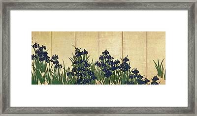 Irises Framed Print by Ogata Korin