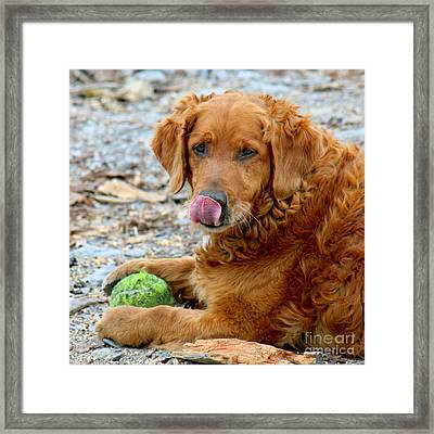 It's My Ball Framed Print