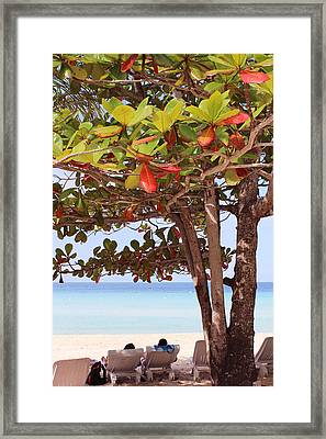 Jamaican Day Framed Print