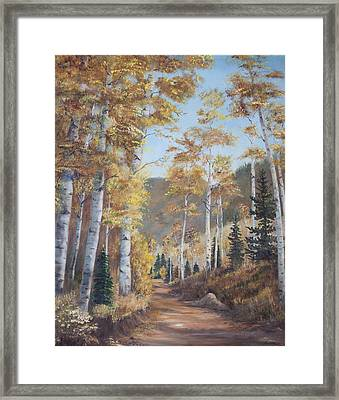 Cathedral Of The Aspens Framed Print
