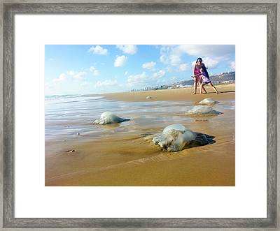 Jellyfish On The Beach Framed Print by Photostock-israel
