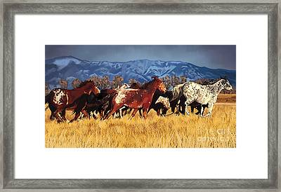 Framed Print featuring the painting Joe's Horses by Tim Gilliland