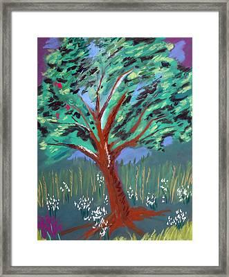 Johnny Appleseed Framed Print by Randy Ross