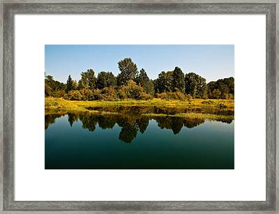 Johnson Creek Framed Print by Randolph Fritz