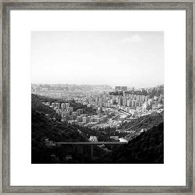 Jungle Life Framed Print