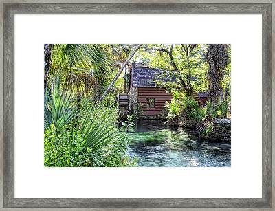 Juniper Springs Framed Print by Bob Jackson