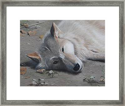 Just A Little Break Framed Print