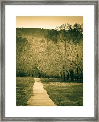 Just A Short Walk Framed Print