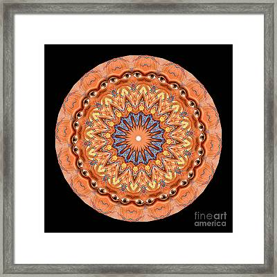 Kaleidoscope Anatomical Illustrations Seriesi Framed Print by Amy Cicconi