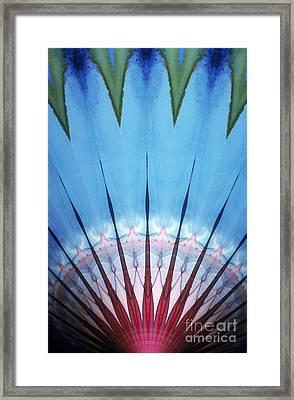 Kaleidoscope Framed Print by Bill Longcore