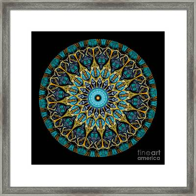 Kaleidoscope Steampunk Series Framed Print